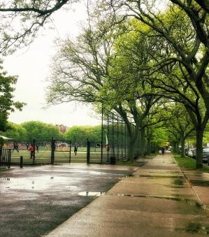 Prospect Park soccer fields